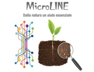 lgobbi-microline-apertura