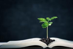 libro-pianta-piantina-conoscenze-agricoltura-conoscenza-by-beeboys-adobe-stock-750x500