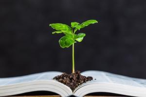 libro-pianta-studiare-universita-by-beeboys-adobe-stock-750x500