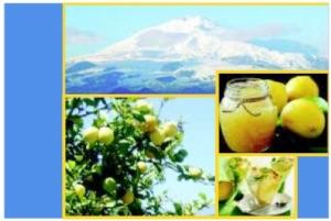 limone-etna-strategie-futuro