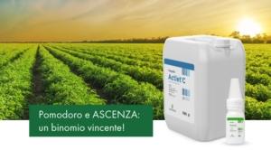 Ascenza<sup>® </sup>Italia per il pomodoro da industria: soluzioni efficaci e collaudate