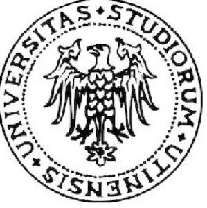 logo-universita-udine