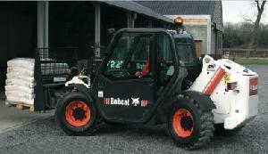 Bobcat, 'un gattino in azienda'