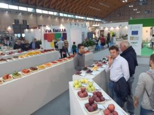 macfrut-2015-via-emilia-by-agronotizie