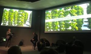 Innovazione tecnologica in orticoltura: in fiera e in campo - Plantgest news sulle varietà di piante