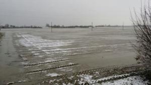maltempo-feb15-campi-cipolla-appena-seminata-imola-fonte-confagricoltura-bologna