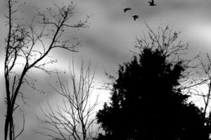 maltempo-nubi-nuvole-fonte-coldiretti