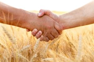 mani-grano-agricoltori-accordo-cooperazione-by-pointimages-adobe-stock