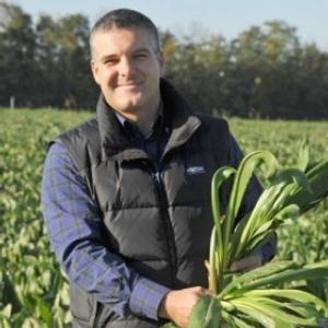 manzan-paolo-presidente-consorzio-tutela-radicchio-rosso-treviso-variegato-castelfranco-igp-280x280