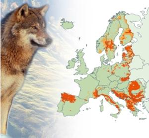 mappa-ue-lupo-fonte-unione-europea