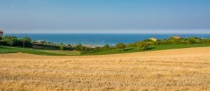 marche-paesaggio-rurale-vicino-fermo-by-lorenza62-adobe-stock-750x328