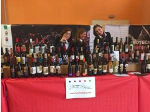 mare-di-vino-2016-livorno-by-fisar-livorno