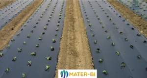 mater-bi-telo-pacciamatura-biodegradabile-gennaio-2021-fonte-compo-expert