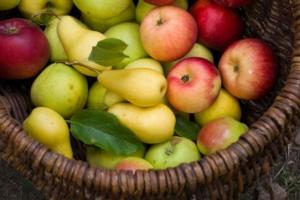 mele-pere-frutta-cesto-by-arinac-adobe-stock-750x500