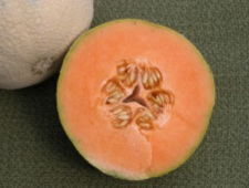 melone-creso1