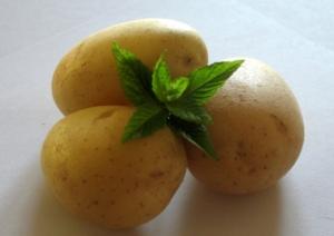 menta-patate-fonte-cedax