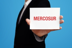 mercosur-by-mq-illustrations-adobe-stock-750x500