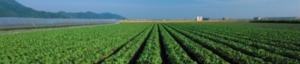 microirrigazione-corso-2019-marzo-12-14-fritegotto
