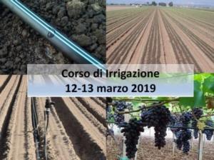 microirrigazione-corso-fritegotto-20190312
