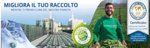 Microalghe, la materia prima ideale per biostimolanti efficaci e sostenibili - AlgaEnergy Italia :: Brand AgriAlgae® - Fertilgest News