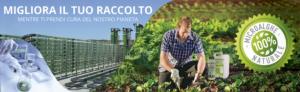 "Microalghe, il ""cibo del millennio"" secondo l'Onu - AlgaEnergy Italia :: Brand AgriAlgae® - Fertilgest News"