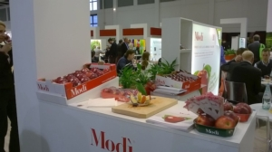 modi-fruit-logistica-2015