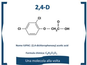 molecola-mese-2-4-d