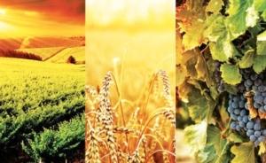 mostra-agricoltura-momevi-2015-da-sito