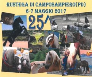 mostra-equini-cavalli-rustega-di-camposampiero-fonte-arav