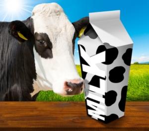 mucca-vacca-cartone-latte-by-alberto-masnovo-fotolia-750