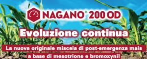 nagano-2000-od-fonte-sumitomo