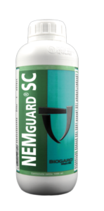 NEMguard<sup>® </sup>SC, il nematocida bio a base di estratto d'aglio