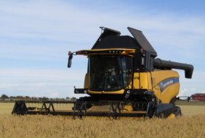 new-holland-ch-770-campo