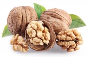 Vivai Zanzi consiglia di scommettere sul noce da frutto - Plantgest news sulle varietà di piante