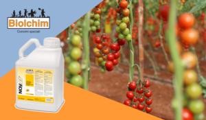 Concimazione ortaggi: sprechi zero, raccolti top - Fertilgest News
