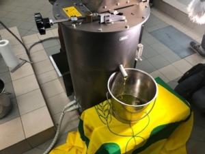 olio-da-olivo-leccino-resistente-a-xylella-28ago19-fonte-coldiretti-puglia