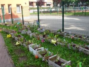 orto-in-cassetta-fonte-foto-alberto-vanzo-associazione-pubblici-giardini