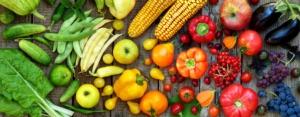 ortofrutta-frutta-verdura-colori-by-oksana-s-adobe-stock-750x292