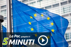 pac-video