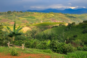 paesaggio-colombiano-fonte-union-camere-emilia-romagna