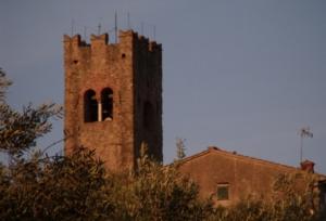 paesaggio-rurale-beni-culturali-olivi-campanile-by-matteo-giusti-agronotizie-jpg
