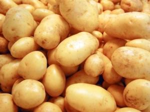 patate-fonte-crpv