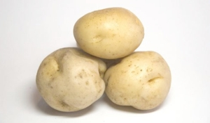 patate-morguefile-archive-display-85929