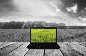 pc-computer-bianco-e-nero-internet-agricoltura-by-sasinparaksa-adobe-stock-750x494