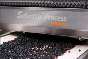 pellenc-selectiv-process-winery
