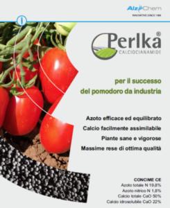 Calciocianamide Perlka<sup>®</sup>, per il successo del pomodoro da industria - Fertilgest News