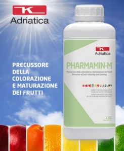 pharmamin-m-2020-agosto-fonte-adriatica