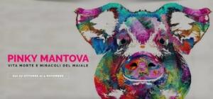 pinky-mantova-2017