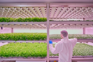 planet-farms-vertical-farm-colture-presentazione-progetto-29mag19