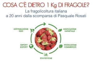 plantgest-fragola-convegno-14-9-2016